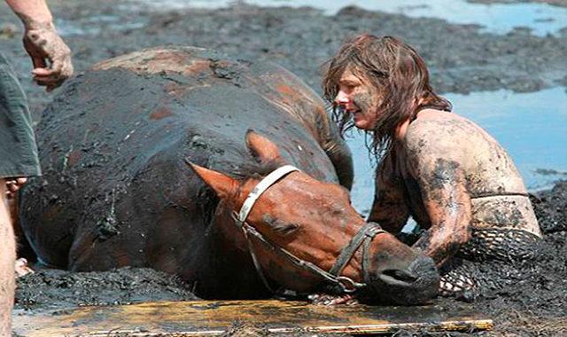 Она обняла своего коня, но, казалось, уже ничто не сможет помочь ему. Он медленно увязал…