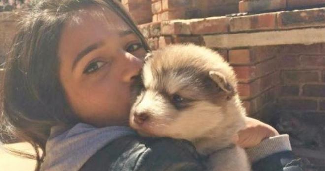 Девочка просто хотела маленького пушистого щеночка, даже не подозревая, что из него вырастет ОН!