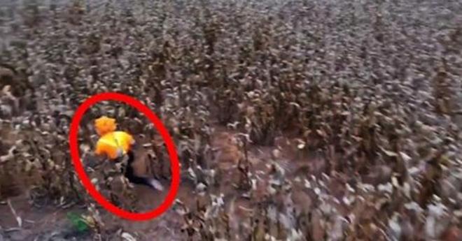Весьма жуткие и ужасающие кадры были сняты при помощи дрона. Шок!