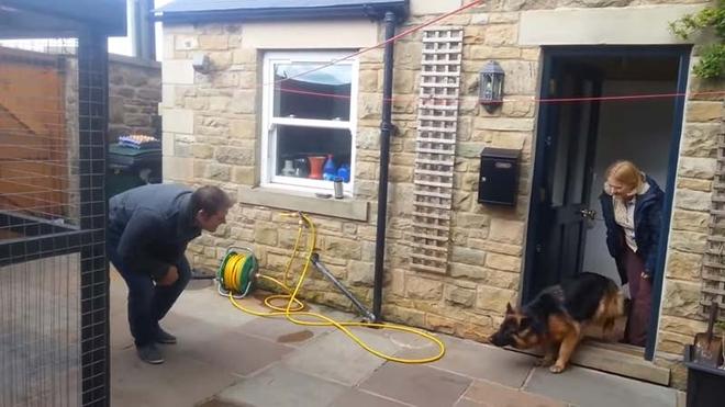 Собака расплакалась от счастья, когда вновь увидела своего хозяина…